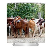 Saddled Shower Curtain