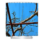 Sagamihara Asamizo Park 17f Shower Curtain
