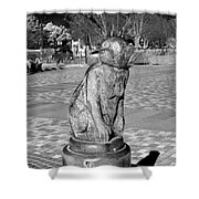 Sagamihara Asamizo Park 7d Shower Curtain