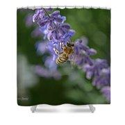 Sage Bee Shower Curtain