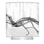 Sage Brush  Shower Curtain