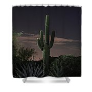 Saguaro At Sunset Shower Curtain