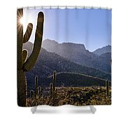 Saguaro Cacti And Catalina Mountains Shower Curtain