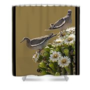 Saguaro Cactus Flower 6 Shower Curtain