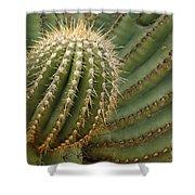 Saguaro Cactus Shower Curtain