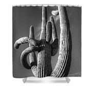 Saguaro Cactus Monochrome Shower Curtain