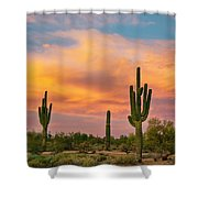 Saguaro Desert Life Shower Curtain