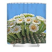 Saguaro Flowers On Top Shower Curtain