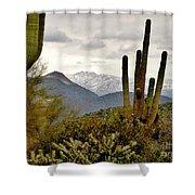 Saguaro Sentinels Shower Curtain