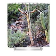 Saguaro Skeleton Shower Curtain
