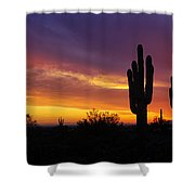 Saguaro Sunset II  Shower Curtain