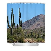 Saguaros And Mountain Shower Curtain