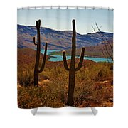 Saguaros In Arizona Shower Curtain