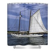 Sailboat In Cape May Channel Shower Curtain