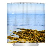 Sailboat Off The Ovens Shower Curtain