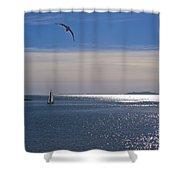 Sailing On Christmas Ventura Harbor Shower Curtain