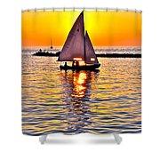 Sailing The Seven Seas Shower Curtain