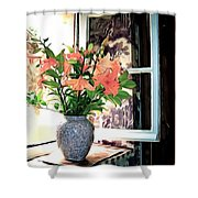 Saint Emilion Window Shower Curtain