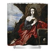 Saint Mary Magdalene In The Desert Shower Curtain