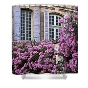 Saint Remy Windows Shower Curtain