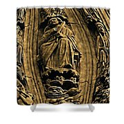 Saints And Demons Shower Curtain