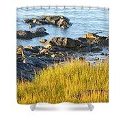 Salem Coastline Shower Curtain