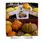 San Joaquin Valley Squash Display Shower Curtain