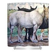 Sally's Horses Shower Curtain