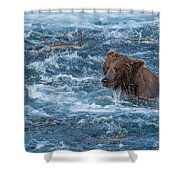 Salmon Salmon Everywhere Shower Curtain