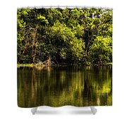 Salt Creek In August Shower Curtain