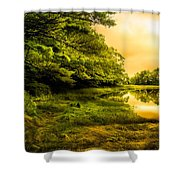 Salt Marsh Kittery Maine Shower Curtain