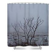 Salt Marsh Submerged In Fog Shower Curtain