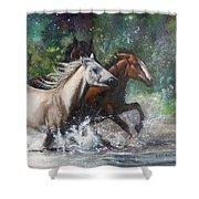 Salt River Horseplay Shower Curtain