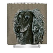 Saluki Shower Curtain