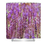 Salvia Abstract Shower Curtain