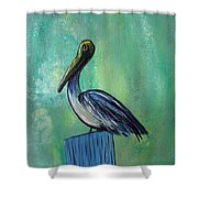 Sam The Pelican Shower Curtain