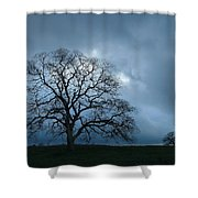 Same Tree Many Skies 14 Shower Curtain