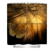 Sample Paneled Following The Light Yellow Butterfly Shower Curtain