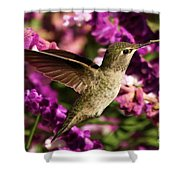 Sampling The Flowers Shower Curtain