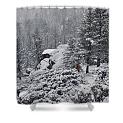 San Jacinto December Wilderness Shower Curtain