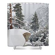 San Jacinto Winter Wilderness Shower Curtain