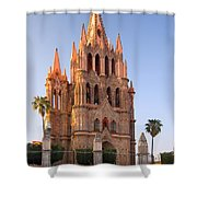 San Miguel De Allende, Mexico Shower Curtain