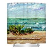 San Onofre Beach Shower Curtain