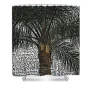 San Palm  Shower Curtain
