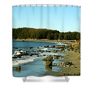 San Simeon Pier Shower Curtain