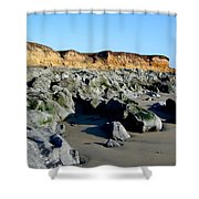 San Simeon Rocky Beach Shower Curtain