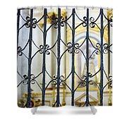 Sanctuary Atotonilco Shower Curtain