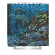 Sanctuary In0021 Shower Curtain