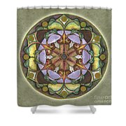 Sanctuary Mandala Shower Curtain