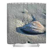 Sand And Seashell Shower Curtain